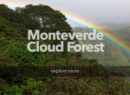 CostaRica_Monteverde3