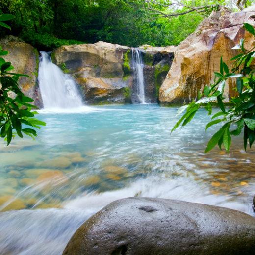 Image001_Guanacaste