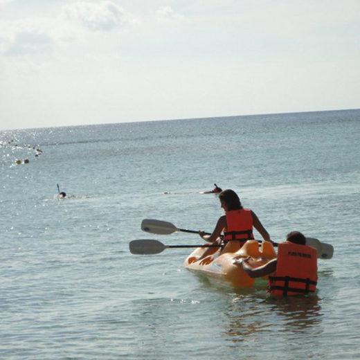 Image008_Guanacaste