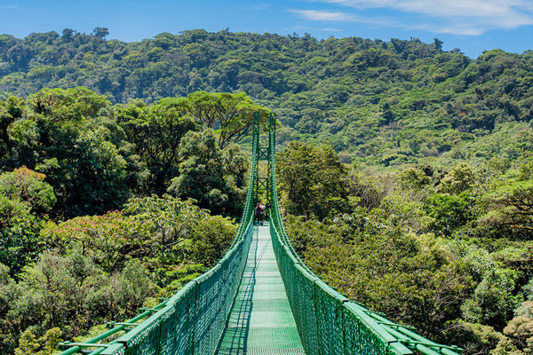 Best Hanging bridges tour in Costa Rica