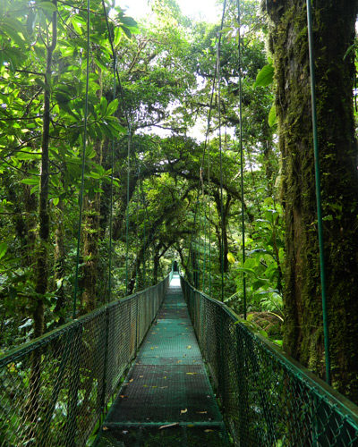 CostaRica_Green-Adventures1
