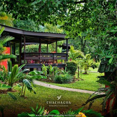 CostaRica_Rainforest&Sun2